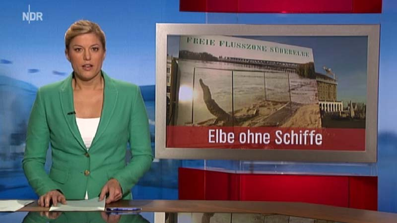 Elbkulturfonds NDR Hamburg-Journal Freie-Flusszone 02 800.jpg